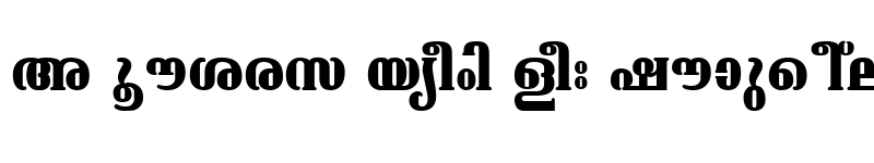 Preview of ML-TTAshtamudi Bold