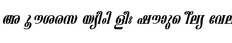 Preview of ML-TTAshtamudi Italic