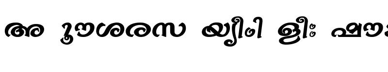Preview of ML-TTBhavana Bold