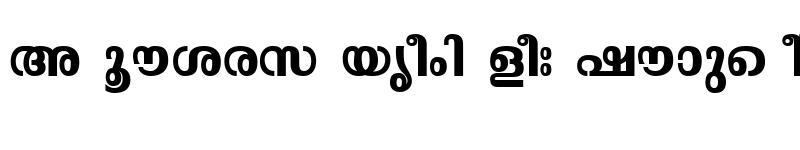 Preview of ML-TTMalavika Bold