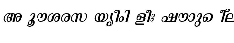 Preview of ML-TTMalavika Italic