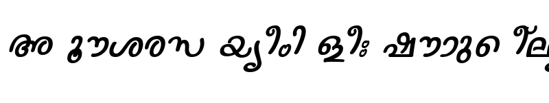 Preview of ML-TTNanditha Italic